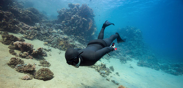 So You Think You Want To Free-Dive ?
