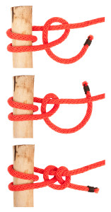 knot series : round turn and two half hitch
