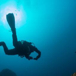 Scuba Diving in Tasmania