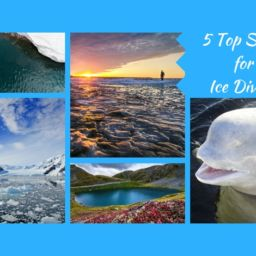 Top Spots for Ice Diving