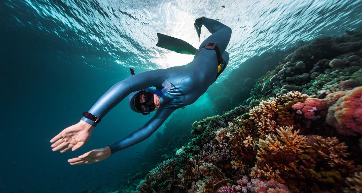 Scuba Diving, Snorkeling, Skin Diving, Freediving: What's
