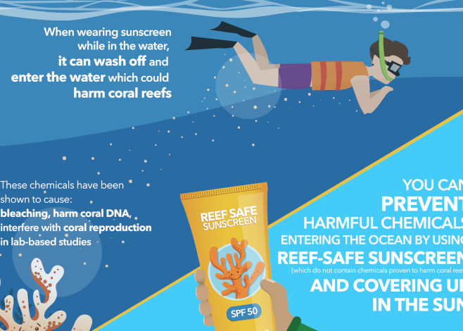 reef safe featured